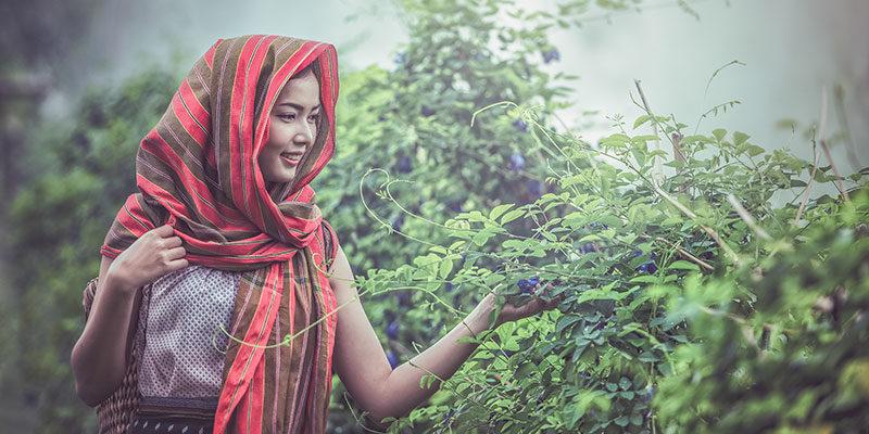 woman with shawl appreciating tea trees